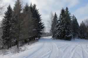 Zimowa edycja Noraftrail….już 10.01.2015
