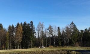 Moja nowa przecudna trasa… 45 km od Krakowa… :):):)
